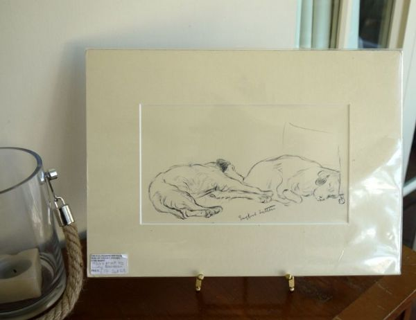 Two English Setters  1930's print by Lucy Dawson - Set D8